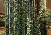 greening desigh