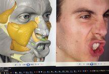 Анатомическое строение лица