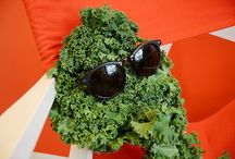 Kale #Trending / Kale is more than just a food, it's one of the biggest food trends! Follow all of the buzz around Kale here!