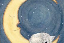 Clairs de lune et autres ciels !