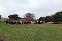 Téléthon 2013 France / 26 collaborateurs de la division A&D ont participé à la course de 8 km en faveur du Téléthon ! Capgemini a remporté le challenge du plus grand nombre d'inscrits ! Bravo à tous pour votre mobilisation !