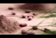 Cholester video
