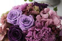 Preserved flower  Purple