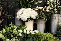 Pop up Florist