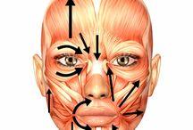 Paràlisi facial rehabilitacion