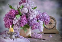 Petit Moment ♥ Lilacs / Seringen / Petit Moment ♥ Lovely lilacs www.petitmoment.nl