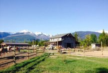 Willow Ranch / A small and newly built guest ranch in the Canadian mountains. We offer a variety of trail rides through the mountains around our ranch, and specialise in customising trails exactly to your wishes. http://www.ranchseeker.com/index.cfm/pg/listing_details/id/32340/frompopup/0