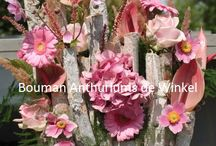 Workshops met anthuriums / Creatieve workshops met anthuriums