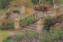 ogród/garden