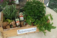 Geschenke / Kräutergarten