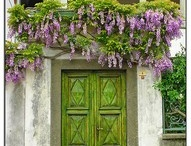Decorating Doors and Windows / by Maria Colosi