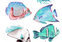 Fish Watercolours