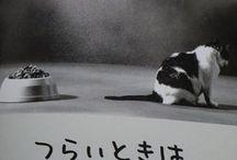 名言 日本語