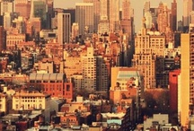 Urban landscapes / For city dwellers