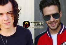 Bersolo Karir, Musik Harry Styles Dibenci Liam Payne