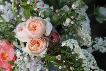 Floral Ideas / by Michele Westrick