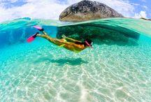 Island Life / by Jodi Zimmer