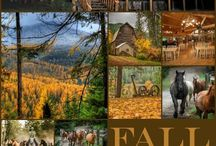 Western Pleasure Basket Retreat Pics / Are you signed up for 4 days and 3 nights of basketmaking at a working guest ranch yet?  Yo-ho North Idaho!  Dates for 2018, April 26-29th