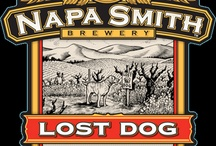 """All Things 'Lost Dog"""""""