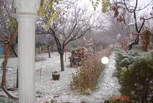 zima a vánoce / vánoční výzdoba
