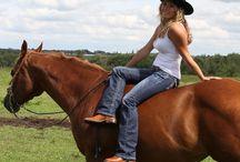 Free riding/ Szabad lovaglás, idomítás