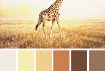 Color inspiration 2 / by Dorthe Pabst