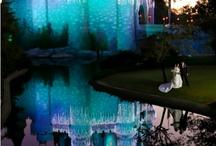 Table/wedding set ups