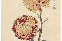 Keika Hasegawa, woodblock print