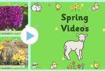 video spring