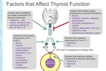 Fibromyalgia | Thyroid and Adrenal Support / Some fibromyalgia patients need extra thyroid and adrenal support. There are off-label uses of certain thyroid and adrenal medications for fibromyalgia being used and studied with good success. Info on these treatments will be posted here.