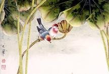 Art Birds / by Edilamar