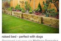 Garden & home ideas