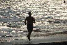 Healthy Diet and Fitness / Healthy Diet and Fitness