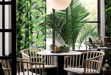 Tropical Botanical / Tropical Botanical Interior