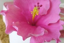 FLOWERS BY FONDANT, GUMPASTE