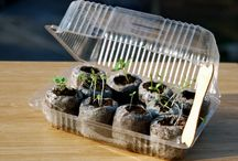 Grow your own plants / How to grow your own plants right...