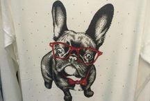 Bulldog francese / tantissime cose bullose