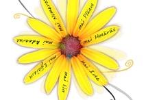Abilitati cognitive pentru toti! / Peceptie! Gindire! Creativitate! Rezolvarea problemelor! Luarea deciziilor!