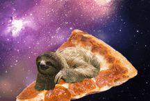 Sloths / All sloths / by Alexa Miller