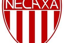 Gwiazdy & NECAXA