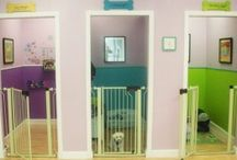 Doggy daycare ideas / by Adrienne Belanger