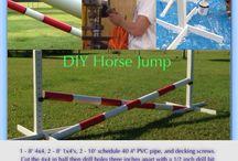 Hest trening