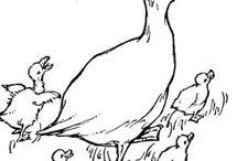 patos , cisnes, garças