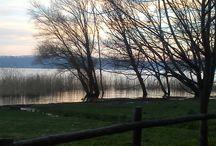 Lago di vico / Immagini paesaggisitiche