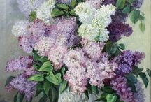 Love for Lilacs