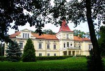 Rzemień - Pałac