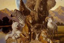 """Állatok - Animals / """"Ha megszelídítesz, megfényesednék tőle az életem. Lépések neszét hallanám, amely az összes többi lépés neszétől különböznék. A többi lépés arra késztet, hogy a föld alá bújjak. A tiéd, mint valami muzsika, előcsalna a lyukamból."""" Antoine de Saint-Exupéry"""