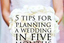weddings / Organise weddings in a short time