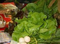 Farm to Chef Movement
