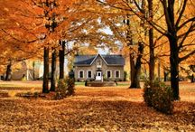 I love autumn! / My fall findings... / by Kimberly Amis